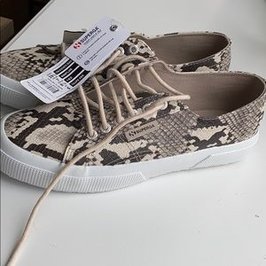 Snake skin Superga sneaker